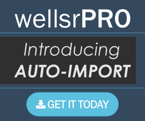 wellsrPRO - The new best way to learn VBA